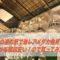 【道の駅・メダカ】埼玉の道の駅で激レアメダカ発見!?しかも値段安い!ので買ってみた【羽生】